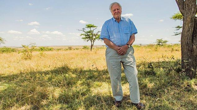 4. David Attenborough: A Life on Our Planet