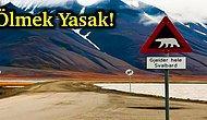 Ölmenin Yasak Olduğu Tek Yer: Birbirinden İlginç Yasaklara Sahip Dünyanın En Kuzeyindeki Yer Svalbard!