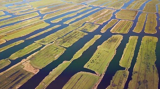 4. Ülke toprakları su seviyesinin altında olduğundan, ülkede bataklıkları kurutarak toprak kazanma hamlesi yapılmış ve karasal alanının yaklaşık % 20'sini böyle elde edilmiş.
