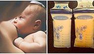 Anne Sütünün Ne Kadar Mucizevi Olduğunu Gösteren Bu Muhteşem Deneyi Okumalısınız!