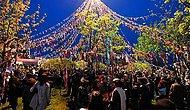 Hıdırellez Kutlu Olsun! Doğanın Uyanışını En Güzel Hıdırellez Mesajlarıyla Kutlayın...