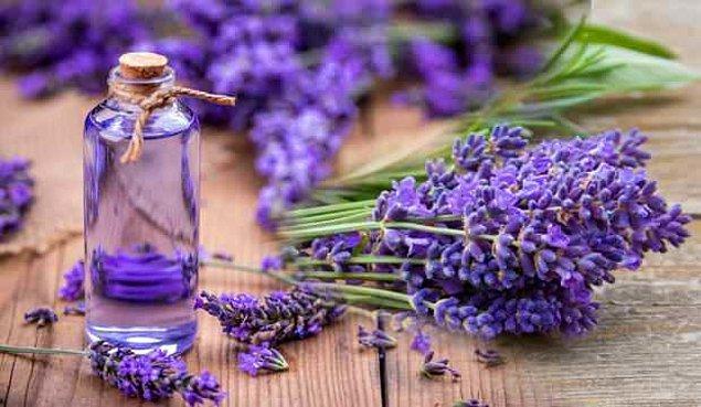 Lavanta da güzellik için kullanılan doğal çiçeklerden biri. Cildin sıkılaşmasını sağlamasının yanında insana dinginlik ve sakinlik vermesi amacıyla da kullanılıyormuş.