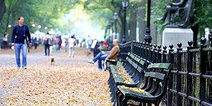 İlginç Bir Yatırım! Bir Türk Aile, Central Park'ta 10 Bin Dolara Bank Satın Aldı