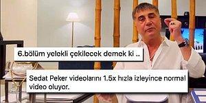 Sedat Peker'in Videolarını Takip Ederken Mizah Yapmaktan Kaçamayanların İlginç Yorumları