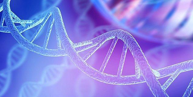 İnsan Genom Projesi, sahip olduğumuz genleri detaylı şekilde haritalandırarak, hangi genin ne işe yaradığını anlayabilmemize olanak sağlayan bir uluslararası ortak çalışma projesidir.