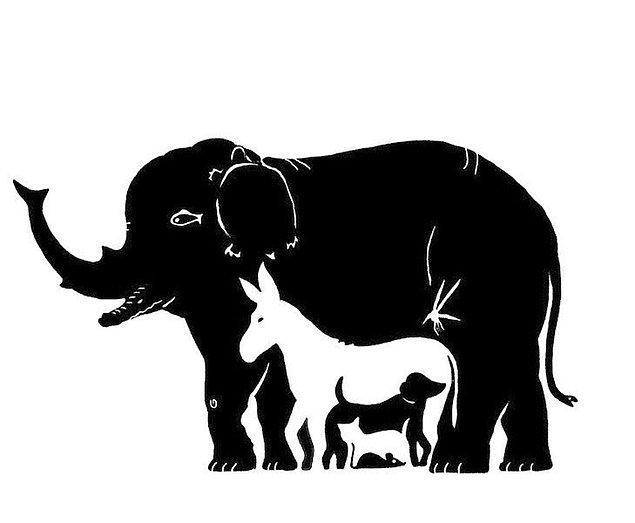 8. Bu görselde kaç tane hayvan görüyorsun?