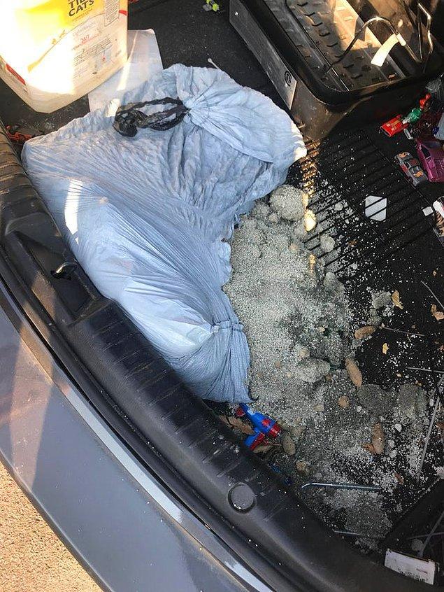 """11. """"Öğle aramda atmak için çöpü bagaja koymuştum, içerisinde kedinin pis kumu da vardı."""""""