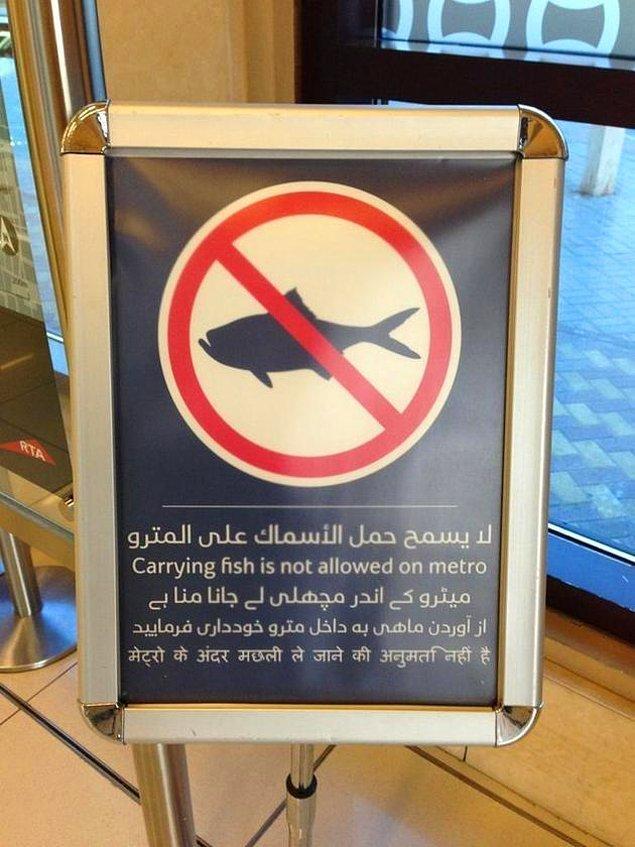 17. Balık taşımak yasak!