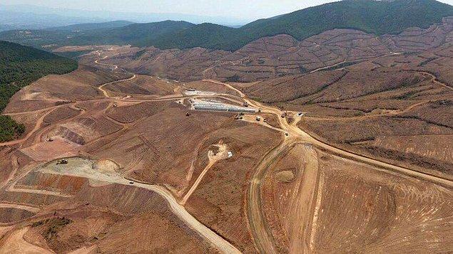 Kaz Dağları'nda maden için kesilen yüzbinlerce ağaç...