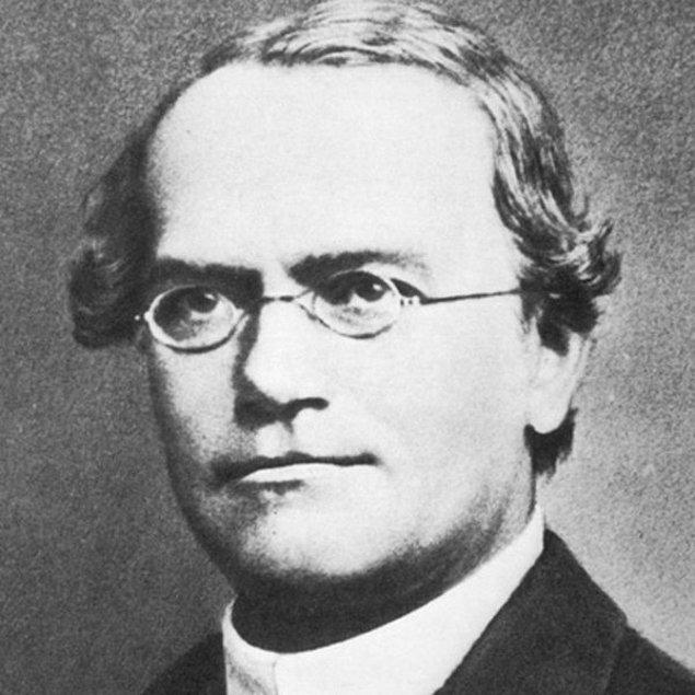 13. Johan Gregor Menden Çekya'da doğmuştur.