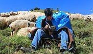 Yaylalarda Çobanlık Yaparken Robert Lisesi'ni Kazandı, Yeni Hedefi ise Hollanda'daki Tilburg Üniversitesi...