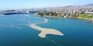 Burçak Yüce Yazio: Deniz Salyası Size Son Uyarım!
