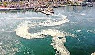 Musilaj Temizleme Çalışmaları Başladı Mı? Deniz Salyası Nedir, Nasıl Oluşur? Marmara Denizi Yok Oluyor...