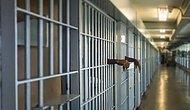 Avrupa Konseyi Raporu: Türkiye Nüfusunun Yüzde 1'i Cezaevinde ya da Denetimli Serbestlik Altında