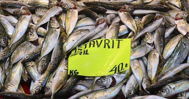 'Balıklarda zehir etkisi yaratması mümkün değil'