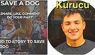 Kandırıldık! Instagram'dan Köpeklere Bağış Yaptığını Düşünen İnsanların Hayalleriyle Oynayan Hesaba Bakın