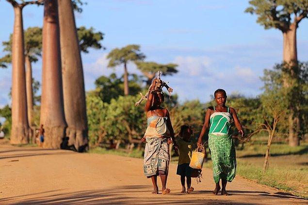 22. Madagaskarlılar aslen Afrika'dan göç etmediler.