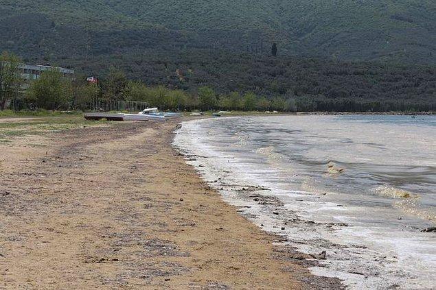 Rüzgar Gelibolu Yarımadası'na taşıdı