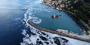 Kabus Büyüyor! Ege ve Karadeniz'deki Tatil Yerleri de Müsilaj Tehdidi Altında