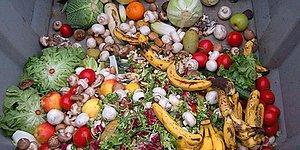 Araştırma: En Çok Sebze, Et, Ekmek ve Garnitür Çöpe Gidiyor