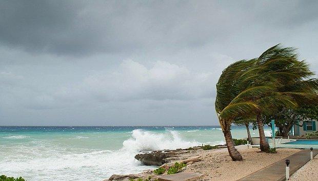 Serin bir rüzgar