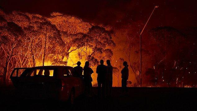 6. Orman yangınlarına sebep olabilecek her türlü ihtimali ortadan kaldırın.