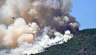 Marmaris'te Orman Yangını: Alevlerin Arasında Kalan Bir Orman İşçisi Can Verdi