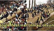 Ölenler ve Yaralananlar Var! Japonya'da 1200 Yıldır Süren 'Kütük Üzerinde Kayma' Festivali: Onbashira