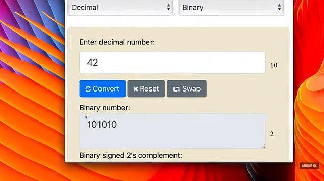 Ayrıca bilgisayar dünyasındaki ikili kod sisteminde 42'nin karşılığı 101010. Yani var yok var yok var yok.