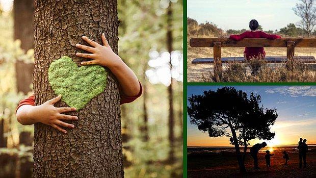 Doğanın Güzelliklerinin Farkında Olarak Yaşamanın Hayatınızda Değiştireceği 11 Şey