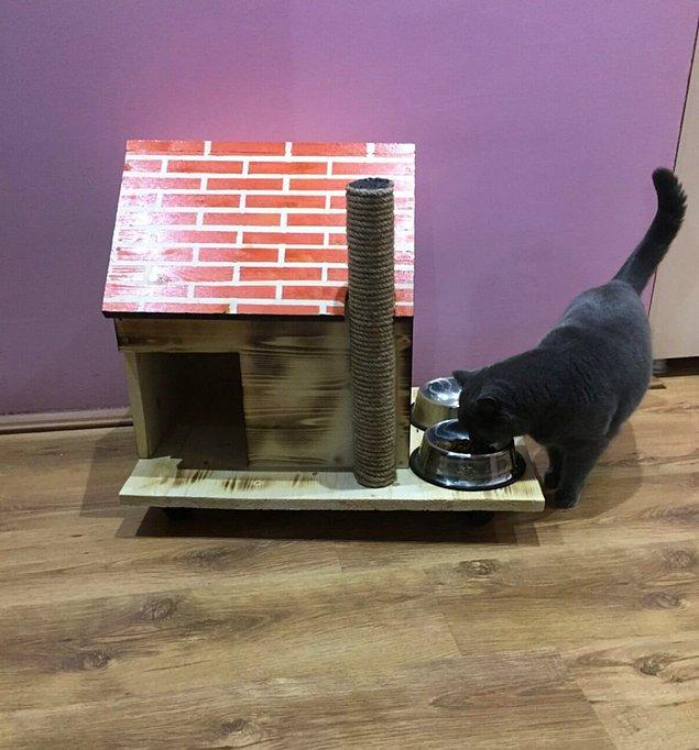 1. Doğal ahşap kedi evi