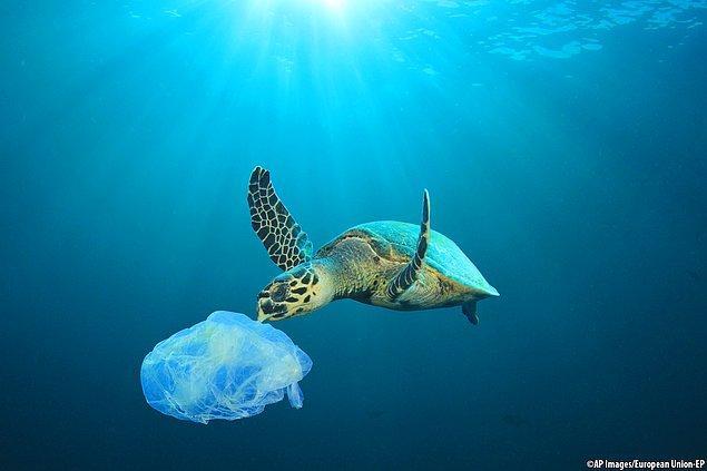 Plastiksiz Temmuz (Plastic-Free July) Nedir?