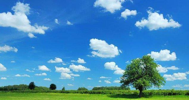 Ozon, aynı zamanda alternatifi bulunmayan çok güçlü bir dezenfektan.