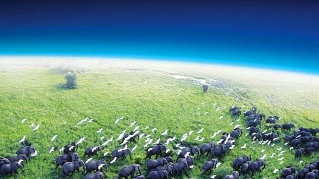 2. Planet Earth (2006)