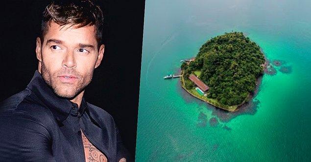 19. Porto Rikolu şarkıcı Ricky Martin 2008 yılında Brezilya'da 8 milyon dolarlık bir ada satın almış.