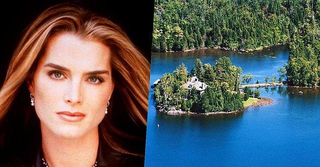 24. Kariyerinin başından beri güzelliğiyle dillere destan olmuş oyuncu Brooke Shields'ın da New York'ta kendisine özel Emerald isminde bir adası var.