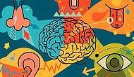 Bir Taşla İki Kuş! Uygulamaya Başladığınız Anda Beyninizi Geliştirecek Olan 11 Aktivite
