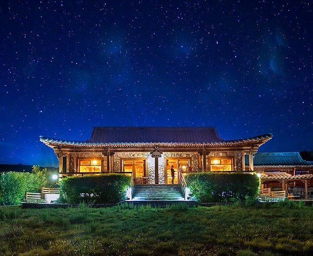 9. Three Camel Lodge - Moğolistan