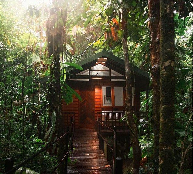 1. Daintree Wilderness Lodge - Avusturalya
