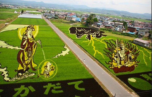 10. Bazı tarlalarda pirinç, devasa sanat eserleri gibi görünecek şekilde yetiştirilir. Bu resimler farklı pirinç türleri kullanılarak oluşturulmuştur.