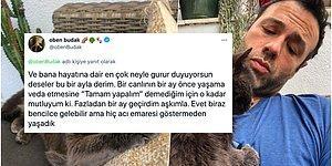 Oben Budak'ın Tüylü Dostuyla Yaşadığı Son 1 Ayın Hikayesini Okuyunca Gözyaşlarınıza Hakim Olamayacaksınız