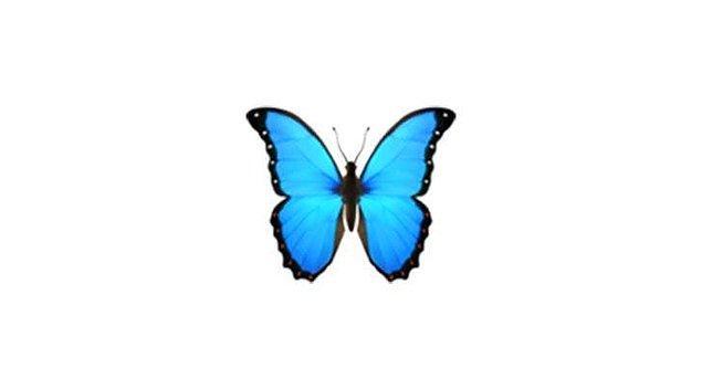 Ancak kelebek emojisi ondan ilham alınmış... O kadar meşhur ve göz kamaştırıcı bir varlık.