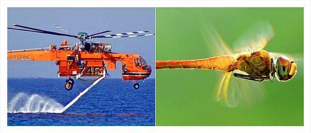 2. Helikopter ve Yusufçuk