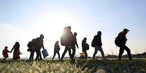 Avrupa Ülkeleri Türkiye'nin En Büyük Sorunu Afgan Mültecilerle İlgili Ne Düşünüyor?