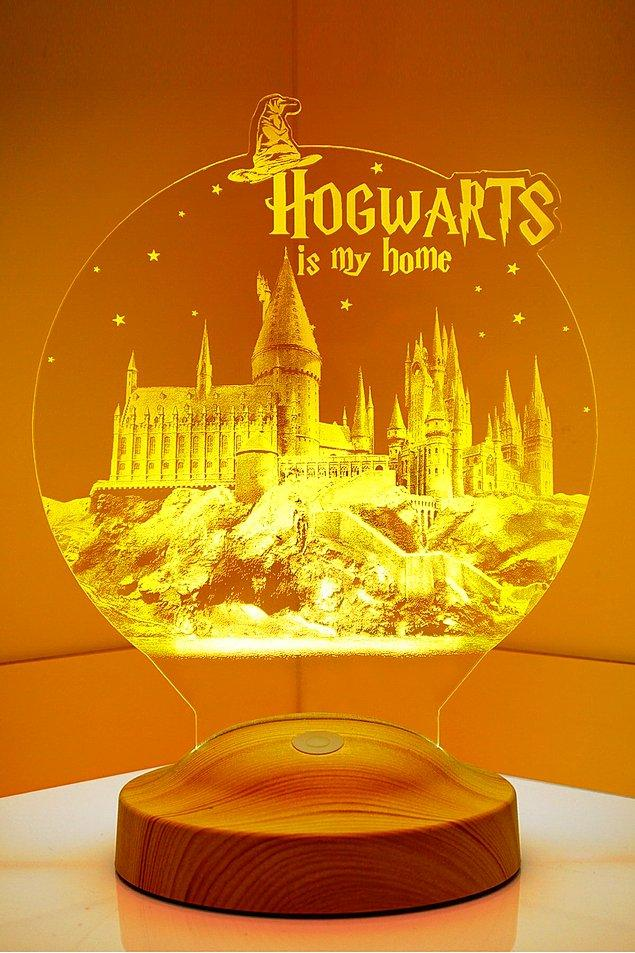 4. Hogwarts evimiz Dumbledore babamız!