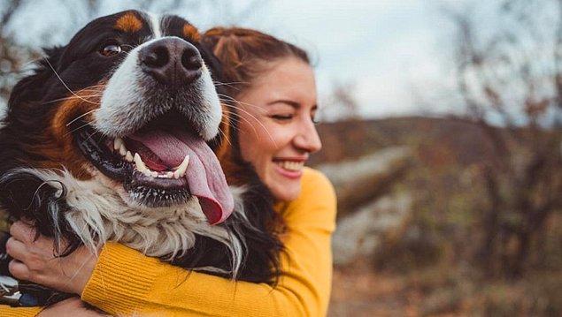 4. Sahipleneceğin köpeğe ne verebilirsin?