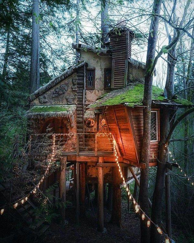 6. Kuzeybatı Pasifik'te cadılar için yapılmış gibi duran ağaç ev.