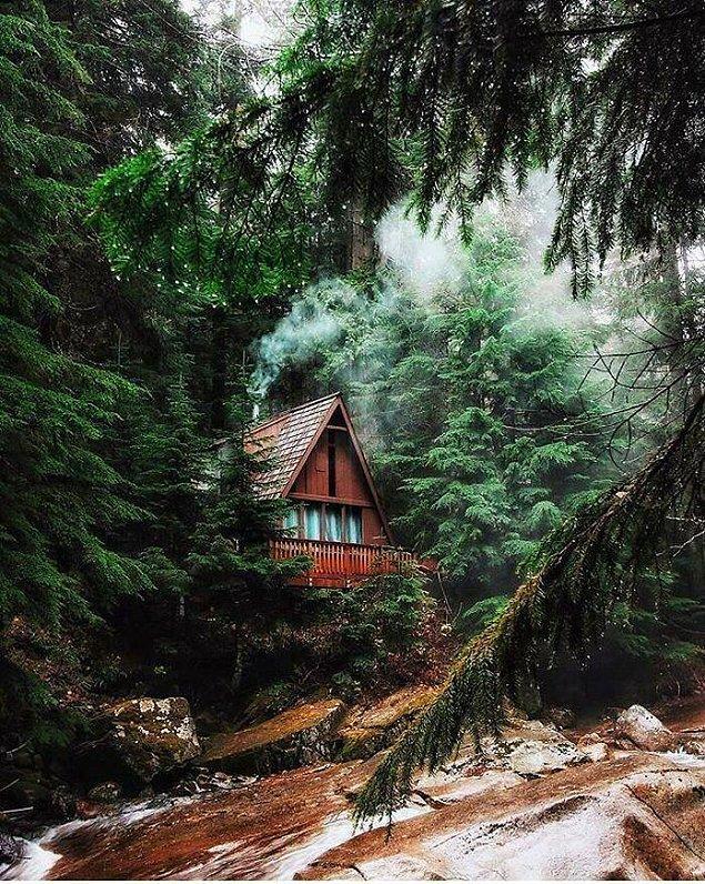 19. Washington Eyaleti'ndeki Franklin Falls Trail'de bulunan bu güzel kabin.