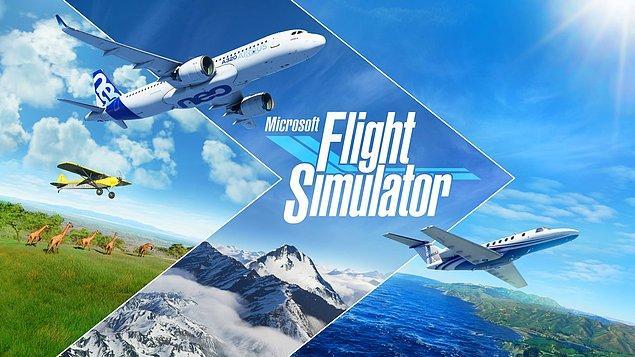 3. Microsoft Flight Simulator