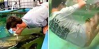 Akvaryumdaki Balığı Ağzıyla Beslemeye Çalışırken Bayılan Adamın Viral Olan Fake Görüntüleri